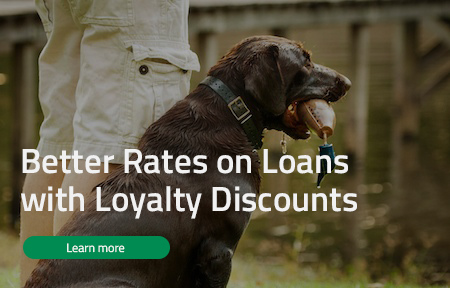Better Rates on Loans